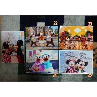 Disney - ディズニー公式写真
