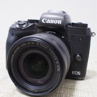 Canon - Canon EOS M5ズームレンズキットBluetooth&Wi-Fi 自撮り