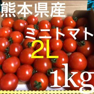 ミニトマト 2L 1kg