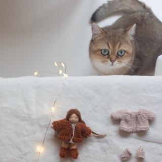 ボンポワン(Bonpoint)の専用 happytoseeyou knit set (人形)
