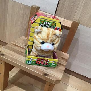 赤ちゃんスコティッシュ 電動おもちゃ(知育玩具)