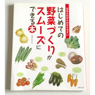 はじめての野菜づくりがスムーズにできる本 Q&Aだからわかりやすい(趣味/スポーツ/実用)