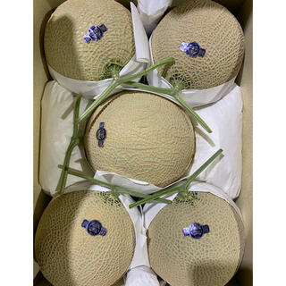 静岡 高級アールスメロン 白5玉 隔離栽培 マスクメロン(フルーツ)