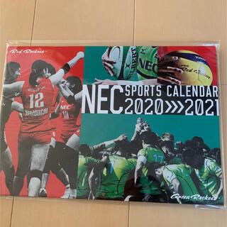 エヌイーシー(NEC)のNEC SPORTS CALENDAR 2020≫2021(カレンダー/スケジュール)