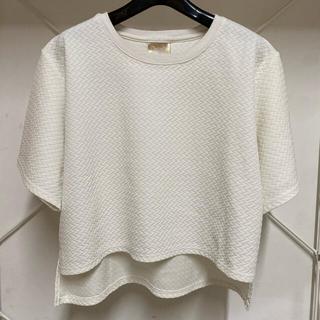 スタイルナンダ(STYLENANDA)のALAND  クロップ丈 半袖 トップス 白(Tシャツ(半袖/袖なし))