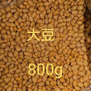 大豆 カナダ産 800g