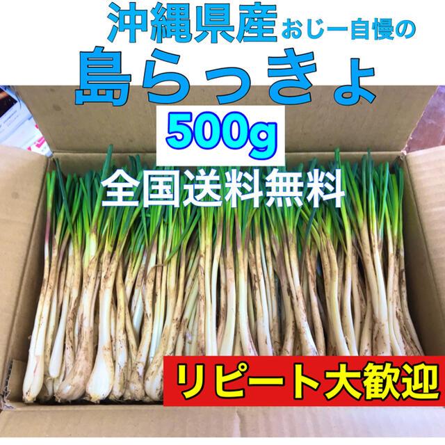 500g 沖縄県産 島らっきょう ※初出荷 食品/飲料/酒の食品(野菜)の商品写真