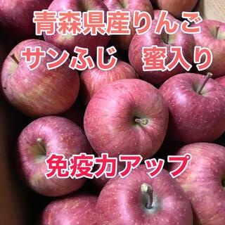 青森県産りんご サンふじ 家庭用(フルーツ)