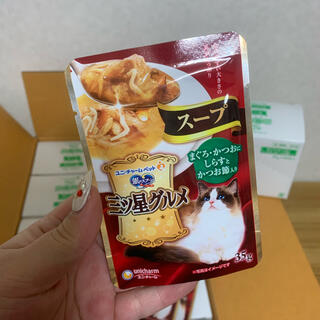 スープ1セット キャットフード(猫)