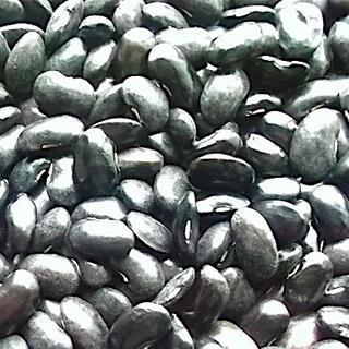 2020年産 冷涼な北海道/置戸栽培ー黒花豆800グラム 無農薬栽培(野菜)