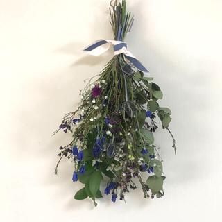 ブルー× 紫/ ドライフラワー スワッグ ナチュラル雑貨 北欧インテリア(ドライフラワー)