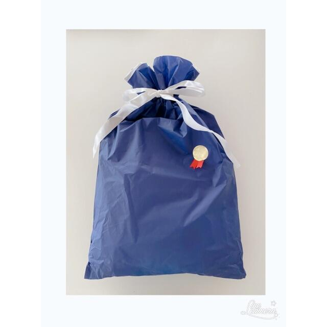 mikihouse(ミキハウス)の新品未使用 ANA ミキハウス フード&マフラー キッズ/ベビー/マタニティのこども用ファッション小物(マフラー/ストール)の商品写真