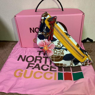 Gucci - the north face × GUCCI Belt Bag