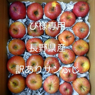 ぴ様専用 長野県産 りんご 訳あり10kgサンふじ(フルーツ)