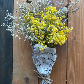 黄色と白のかすみ草の花束 ユーカリ ブルーファンタジア ドライフラワー(ドライフラワー)
