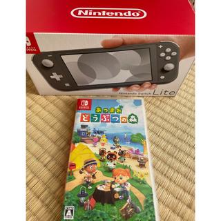 Nintendo Switch - Nintendo Switch Liteグレー 本体