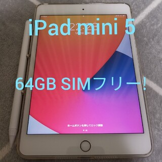 Apple - 【美品】iPad mini 5 64GB ドコモ SIMフリー