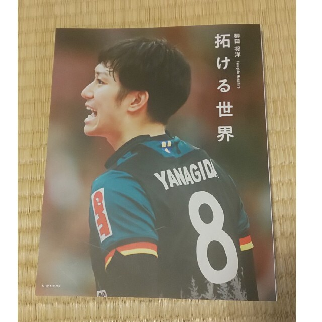 柳田将洋 拓ける世界 スポーツ/アウトドアのスポーツ/アウトドア その他(バレーボール)の商品写真