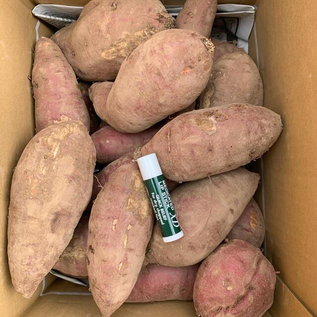 B級品 無農薬紅はるか 紅さつま 5キロ 食品/飲料/酒の食品(野菜)の商品写真