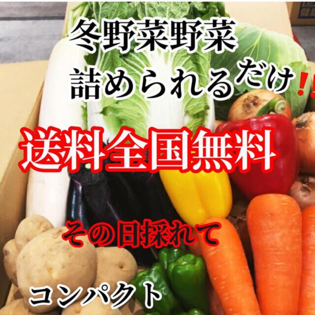 激安❗️おまかせ農家直送野菜コンパクト入る分だけ詰めます送料無料 食品/飲料/酒の食品(野菜)の商品写真
