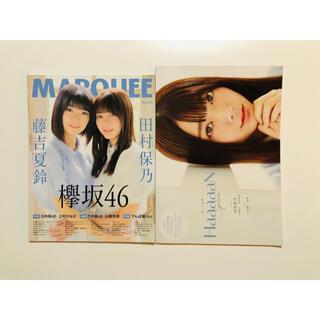 ケヤキザカフォーティーシックス(欅坂46(けやき坂46))の欅坂 雑誌(アート/エンタメ/ホビー)