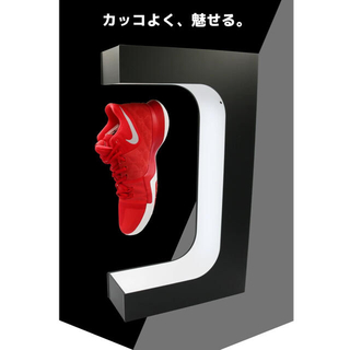 FLY SHOES  スニーカー ディスプレイ(その他)