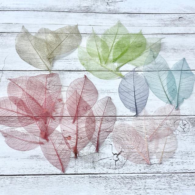 ★kotona1様専用★花材4点おまとめ ハンドメイドのフラワー/ガーデン(ドライフラワー)の商品写真