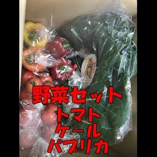 静岡県産野菜セット(トマト、パプリカ、ケール)(野菜)