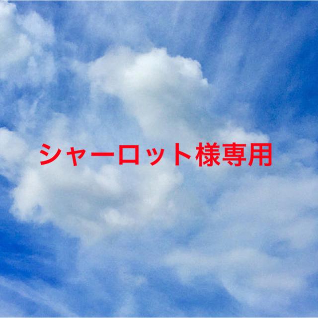 シャーロット様専用ページ コスメ/美容のスキンケア/基礎化粧品(美容液)の商品写真
