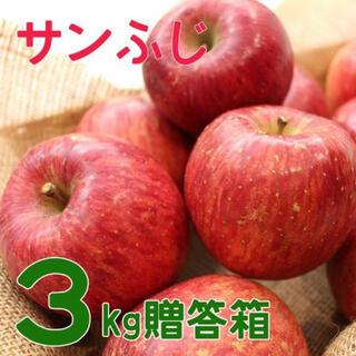 信州産 リンゴ(フルーツ)