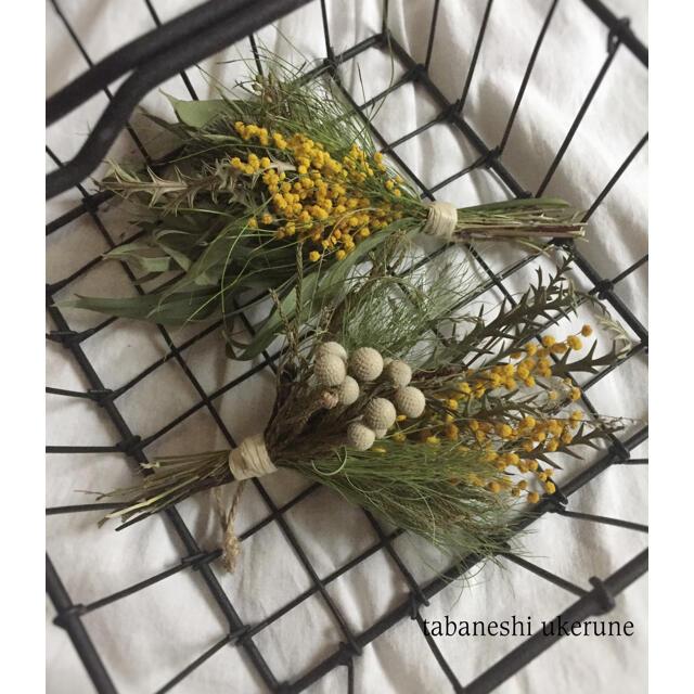 小さめなサイズが可愛らしい ミモザとブルニアの スワッグ ドライフラワー ハンドメイドのフラワー/ガーデン(ドライフラワー)の商品写真