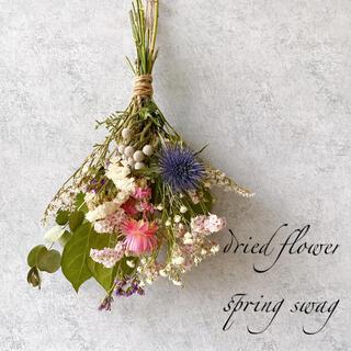 ドライフラワー 春を告げる spring スワッグ (ドライフラワー)
