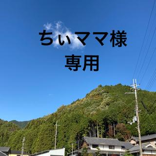 再入荷 アーユルヴェーダ【サマハン 100袋】ハーブティー スパイスティー(茶)