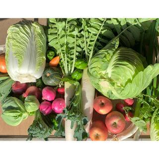 冬野菜と果物 (野菜)