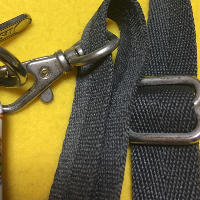 LeSportsac(レスポートサック)のレスポートサック スモールベロニカ レディースのバッグ(ショルダーバッグ)の商品写真