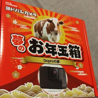 GoPro - ヨドバシカメラ福袋 2021Goproの夢