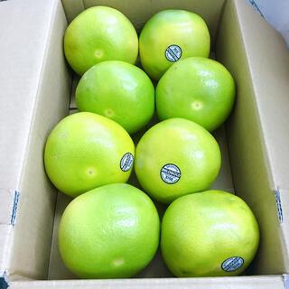 アメリカ産 メロゴールド8玉(フルーツ)