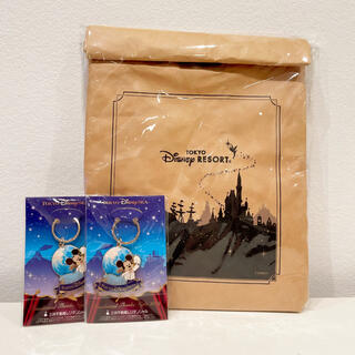ディズニー(Disney)のディズニー 非売品 限定 JCB キーホルダー バッグ ミッキー レア チケット(ノベルティグッズ)