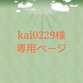 kai0229様専用(ピアス)