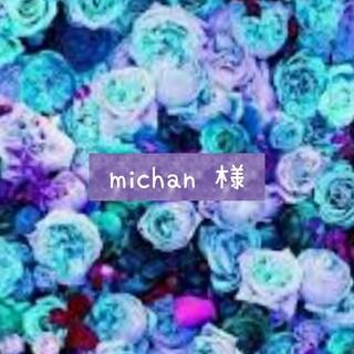 michan 様専用(ピアス)