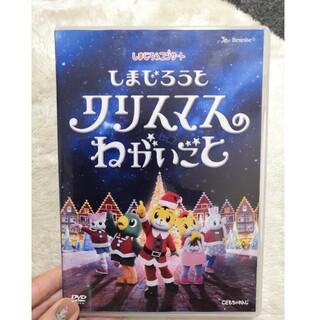しまじろう コンサート DVD(キッズ/ファミリー)
