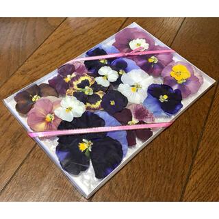 a②4点限定500円‼️銀の紫陽花が作ったパンジーのドライフラワー(ドライフラワー)
