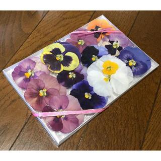 a③  4点限定500円‼️銀の紫陽花が作ったパンジーのドライフラワー(ドライフラワー)