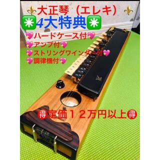 大正琴 ハードケース アンプのセット おまけ2種類付き(大正琴)