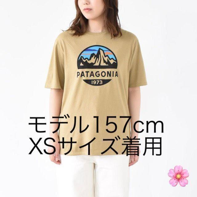 patagonia(パタゴニア)の最安値!送料無料 XSサイズ パタゴニア Tシャツ タン 国内正規品 メンズのトップス(Tシャツ/カットソー(半袖/袖なし))の商品写真
