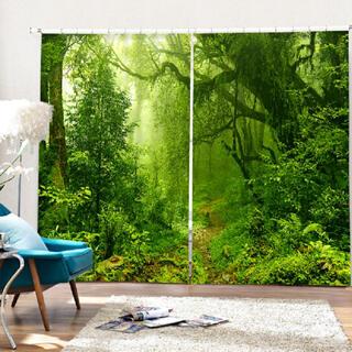 森柄のカーテン(カーテン)