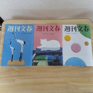週刊文春 3冊 セット(ニュース/総合)