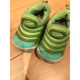 NIKE - NIKE ダイナモフリー 緑 13