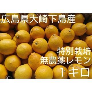 は様専用 無農薬!レモン1キロ&レッドキウイ特大8個セット(フルーツ)
