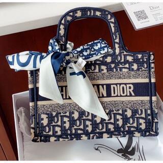 クリスチャンディオール(Christian Dior)のChristian Dior クリスチャン ディオール ブックバッグ ネイビー小(その他)